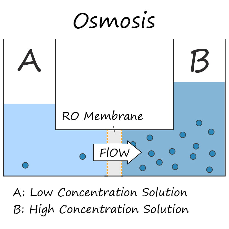 Natural Osmosis Process Diagram